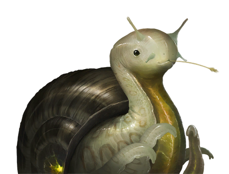 Molluscoid 18 - Some odd details about certain species portraits